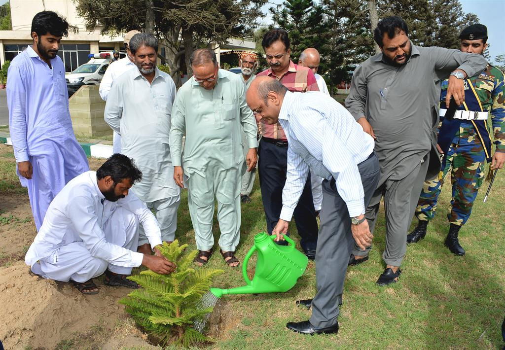Chairman PQA in plantation ceremony - 3