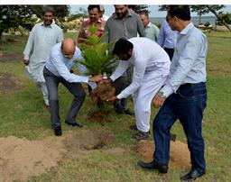 Chairman PQA in plantation ceremony - 6