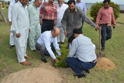 Chairman PQA in plantation ceremony - 7