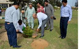 Chairman PQA in plantation ceremony - 0