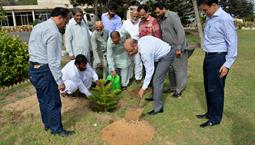 Chairman PQA in plantation ceremony - 1