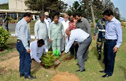 Chairman PQA in plantation ceremony - 2