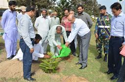 Chairman PQA in plantation ceremony - 5