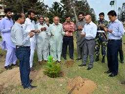 Chairman PQA in plantation ceremony - 30
